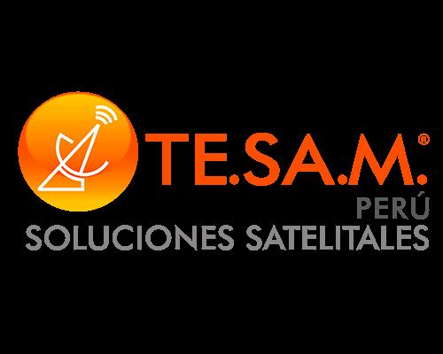 LOGO-TESAM